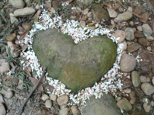 心型的石頭