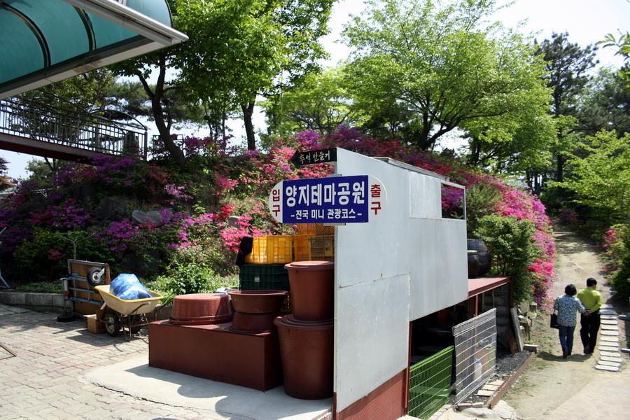 Yangji Park(1)