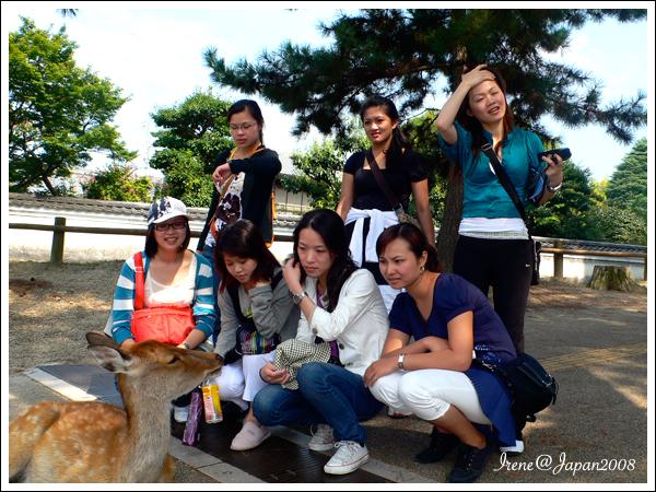 090508_22_奈良公園