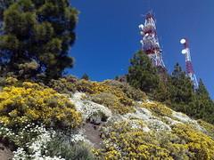 Gran Canaria - Pozo de las Nieves