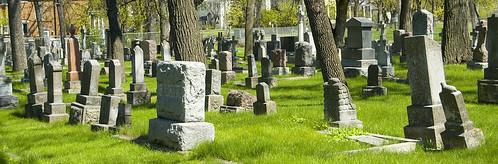 Unassuming graves.
