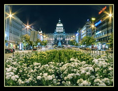 Prague National Museum (Mike G. K.) Tags: city longexposure flowers building statue architecture night stars geotagged lights nightshot prague praha wenceslassquare vclavsknmst symmetry dome czechrepublic nationalmuseum muzeum flares neoclassical towncenter blending exposureblending photomatix nrodnmuzeum 3exp wenceslasmonument mstek vaclavskenamest geo:lat=50081093 geo:lon=14427913 mikegk:gettyimages=submitted