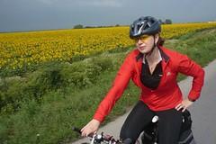 Danube by Bike 2009 – na kolech do Bělehradu z Budapešti či Bukurešti