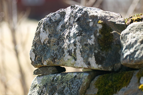 Stones.. In tricky sunlight.