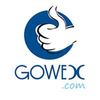 logo_gowex