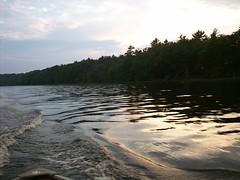 100_0632 (D. J. Lique) Tags: water waves treeline