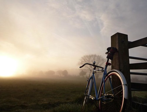 morning fixie