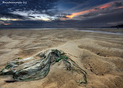 Rags washed ashore.  :O) (Ragstatic) Tags: travel light sea people seascape color tourism beach water relax landscape photo google search nikon singapore rocks asia exposure view rags culture visit tourist photograph destination d700 singaporeview singaporetourist