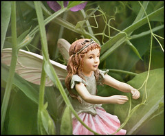 The Sweetpea Fairy