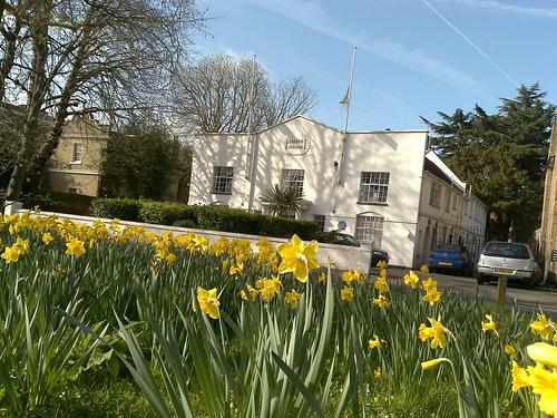 Spring in Ealing