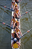 Redwood Shores Rowing Classic