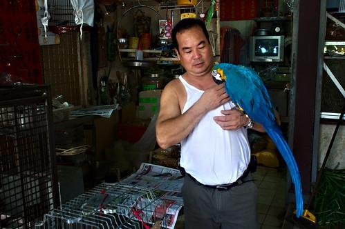 Yuen Po Street Bird Garden 06