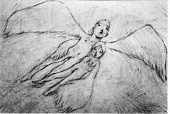 闇を見つめる羽根