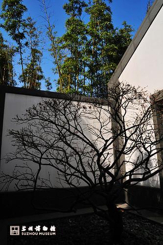 苏州博物馆6