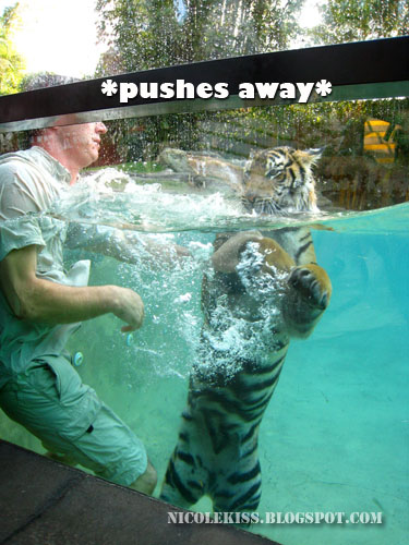 pushing tiger away