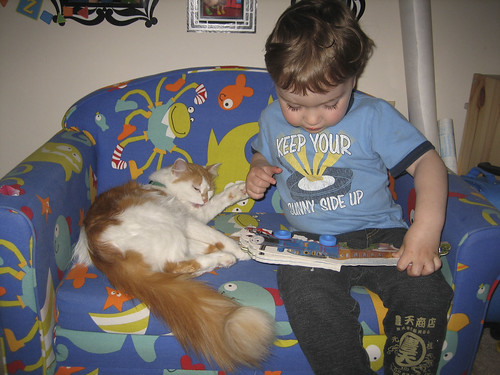 reading to the kitty