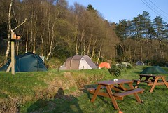 Campsite, Wales