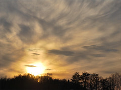 Cloudy Sunset (ginfox) Tags: blue trees sunset sky sun black nature up yellow clouds gray wispy