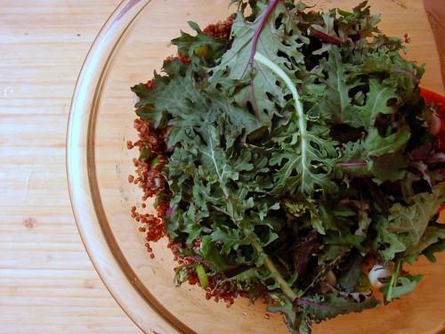 salad, pre-toss