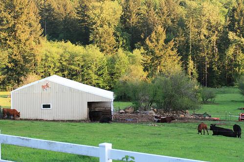 our_farm