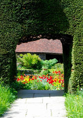 A Tantalising Glimpse of One of the Gardens at Great Dixter! (antonychammond) Tags: uk flowers england beautiful gardens topiary britain path hedge eastsussex ohhh christopherlloyd greatdixter anawesomeshot flickraward theperfectphotographer postcardsfromthehedge