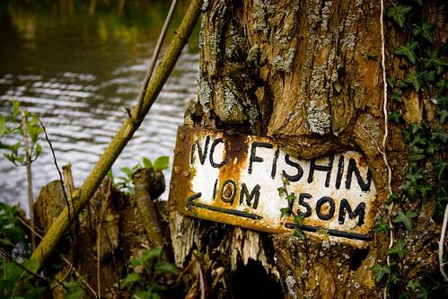 No Fishin