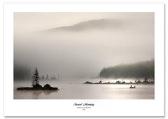 When silence is sacred! (Imapix) Tags: fishing fishermen chaloupe boat mist brouillard brume morning matin island sacredmorning pche mountains montagnes stznon pcheur vaporous ethereal fog embarcation barque bateau photography photographie photo foto image imapix gaetanbourque canada quebec bravo gatanbourquephotography imapixphotography nature canon qubec art 100commentgroup