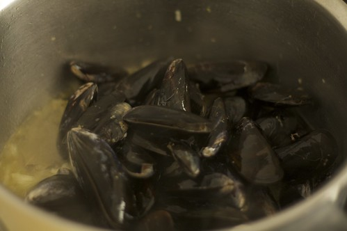 Mussels in Arak