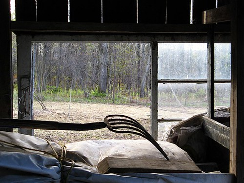 shed_05a