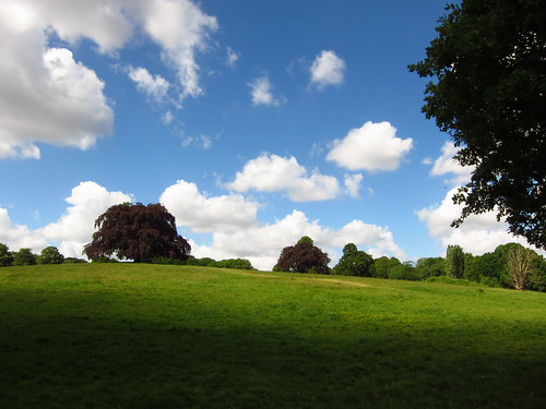 The South Meadow, Hampstead Heath