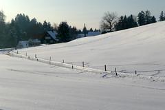 Bauernhof (Alfesto) Tags: bayern schweiz switzerland vorarlberg eggersriet fnflnderblick kantonstgallen badenundwrttemberg rossbchel