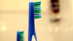 Anglų lietuvių žodynas. Žodis toothbrush reiškia dantų šepetėlis lietuviškai.