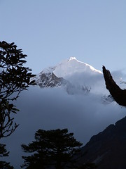 Pandim, Sikkim, India (Marc_P98) Tags: morning cloud sunlight india mountain snow tree ice rock sunrise trek view peak summit himalaya sikkim kanchenjunga pandim thangsing
