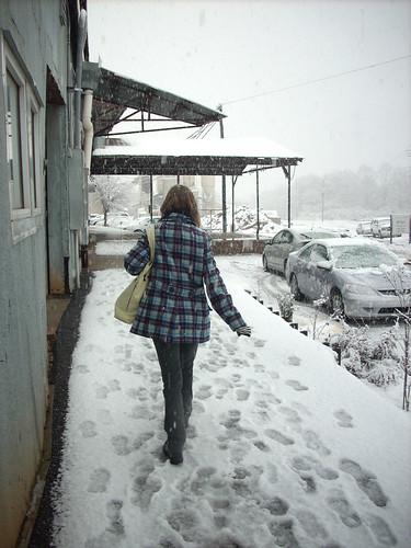 SNOW 2631