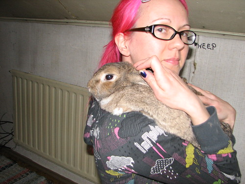 Holding bunny1