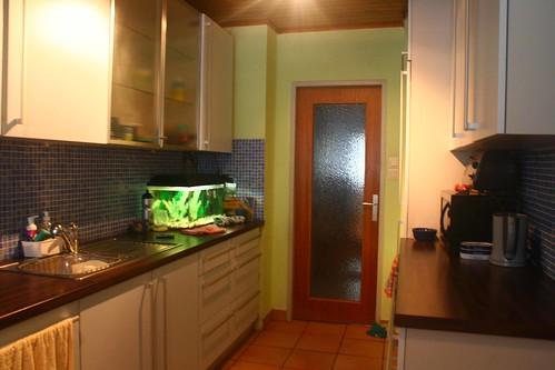 kitchenmaus4