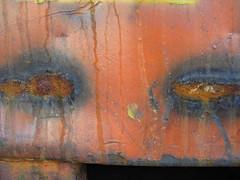 IMG_6449 Rusty Eyes