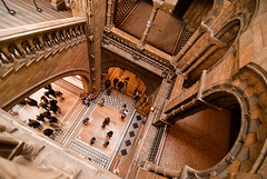 Ascending descending (Ly (Lyanne Wylde Photography)) Tags: people london museum terracotta wide darwin naturalhistory escher naturalhistorymuseum carvings nhm alfredwaterhouse march09 waterhousebuilding tokina1116mm myofficeforafewmoremonths outsidethegiantsequoia