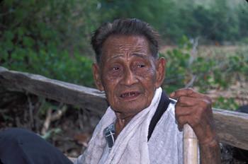 Thai Elder