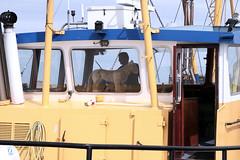 Lauwersoog 7 (Henk Schrijvers) Tags: haven harbour lauwersoog vissersboot fishingship dehavenvanlauwersoog theharbouroflauwersoog