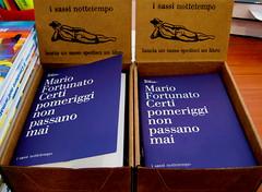 Mario Fortunato, Certi pomeriggi non passano mai; nottetempo 2009; progetto grafico della copertina: Studio Cerri Associati; packacing per l'esposizione e la vendita (part.)