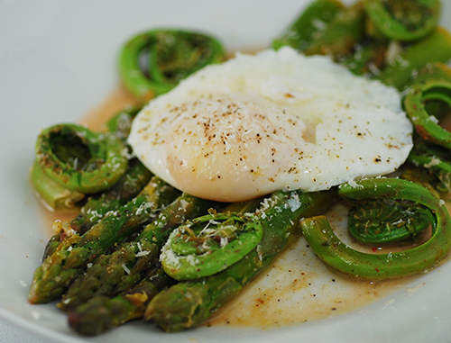 Poached Egg on Asparagus and Fiddleheads