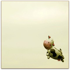 Freedom (jurek d.) Tags: sky freedom cow flying balloon airborne 500k jurekd lamuccacarolina