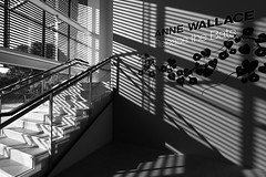 Stripes in the Gallery (Me & My 5D3) Tags: lines stairs stripes goma brisbane 1022mm uwa unusualviewsperspectives