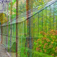The old greenhouse (Tedje51 - mostly off (very busy)) Tags: photoshop hypothetical serre castlegarden tuinhuis geldrop blueribbonwinner kasteeltuin crea awardtree amazingeyecatcher miasbest trolledproud newgoldenseal