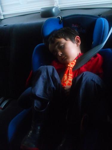 Encorbatado dormido