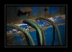 Amarras (Alberto Alrian) Tags: azul puerto cuerda barco d200 estepona cabos amarra pesquero sigma2470 colorphotoaward aplusphoto ltytr1 alrian