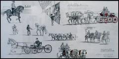PAMPLONA - Navarra. (canduela) Tags: espaa art caballos arte ciudadela picnik pamplona pintura jerez navarra oleo exposicin arquitecto jerezdelafrontera polvorn cartujanos fernandorednhuici