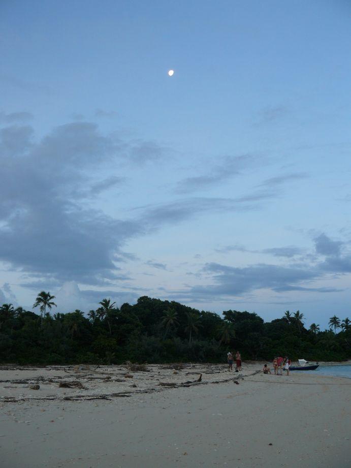 Lune et Sapin