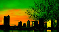 New York/Jersey and the Hudson River (Henrique Vicente) Tags: nyc newyorkcity orange ny tree green newjersey nj financialdistrict hudsonriver